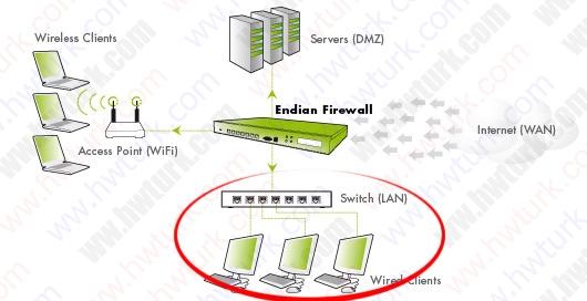 endian-proxy-kurulum-06